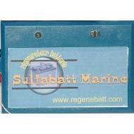 Régénérateur Batteries Marine 24v