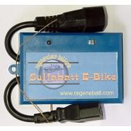Régénérateur Batteries Vélo Électrique E-Bike 36v